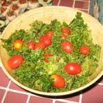 raw-vegan-potluck-6-25-09-035
